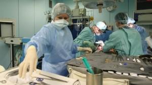 Трансплантация органов и трепанация черепа